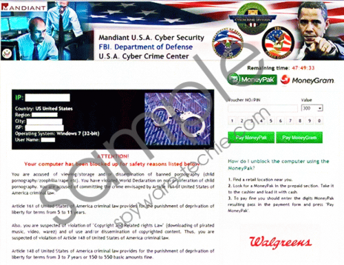 Mandiant U.S.A. Cyber Security Virus Removal Guide